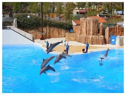 Esthy & Lulla - Delphinarium du Parc Astérix
