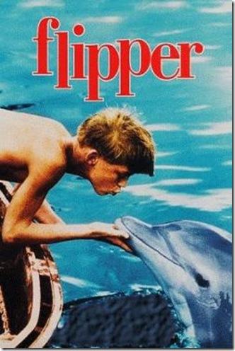 La série Flipper a créé une dauphin-mania dont les dauphins ont été les premières victimes