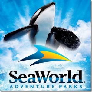 SeaWorld, plus grand esclavagiste des dauphins et des orques depuis 1964