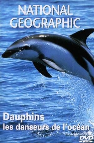 Dauphins, les danseurs de l'océan