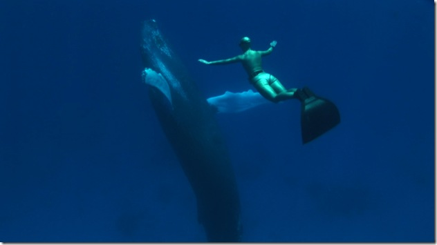 World Champion Freediver Mandy-Rae Cruickshank and Humpback Whale in the Dominican Republic
