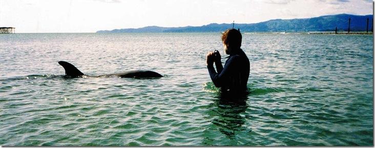 Wade Doak prenant un dauphin en photo - Photo www.waynecostar.com