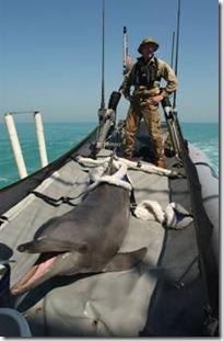 Soldat posant en Irak en mars 2003 avec Tacoma, le dauphin « déserteur », qui a rejoint sa base avec deux jours de retard. (Copyright : Agence Reuters)