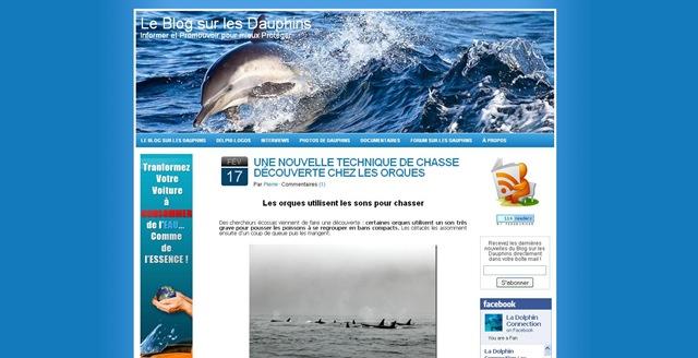 Nouveau design - Le Blog sur les dauphins