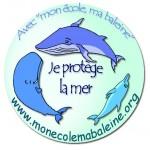 Mon école, ma baleine