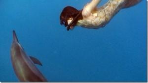 Together : Danser avec les dauphins