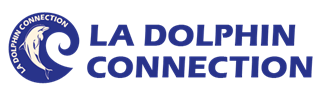 La_Dolphin_Connection_Logo_de_Maelys