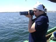 Rimel à la quête d'une photo de Delphinidae