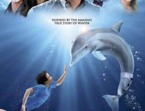 What Dolphin Tale doesn't tell you about Winter