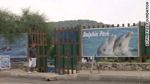 Les parcs à dauphins tels que celui qui retenait Tom et Misha sont nombreux en Turquie, mais ils ne sont pas clairement régulés.