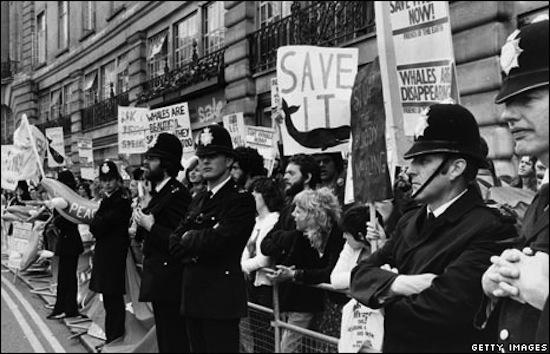 Photo d'archive d'une des manifestation du mouvement Save The Whales