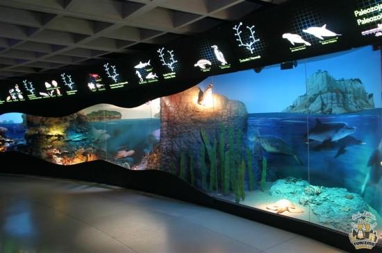 Le Sea museum