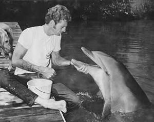 Cathy, un des dauphins, jouant le rôle de flipper s'est suicidée dans les bras de Ric'O'Barry