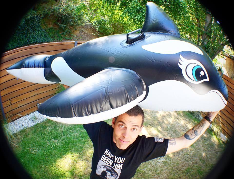 """Steve-O : """"SeaWorld Sucks!"""""""