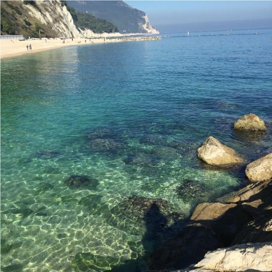 le site étudié en vue d'accueillir un centre de soins, à proximité de Sirolo en Italie. Photo: Dolphin Project