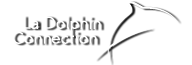 The Dolphins Logo