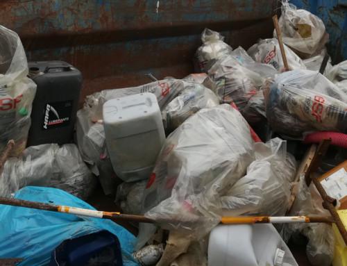 Bilan du nettoyage de plage du 10 novembre 2018