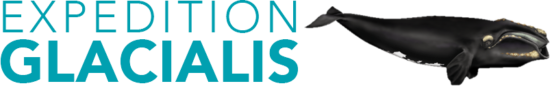 Logo de l'expédition Glacialis